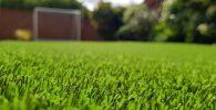 como-elegir-grama-sintetica